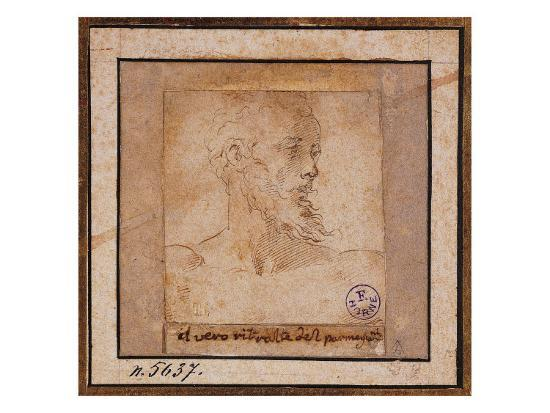 Study Sketch for a Bearded Male Head-Pieter Bruegel the Elder-Giclee Print