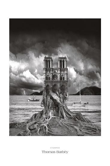 Stumped-Thomas Barbey-Art Print