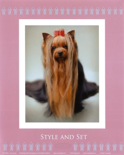 Style and Set-Rachael Hale-Art Print