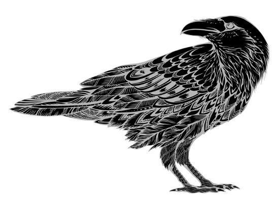 Stylized Crows. Decorative Bird. Line Art. Rook. Black and White Drawing by Hand. Doodle. Zentangle-In Art-Art Print
