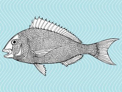 Stylized Fish. Sea Fish. Dorado. Black and White Drawing by Hand. Line Art. Tattoo. Doodle. Graphic-In Art-Art Print