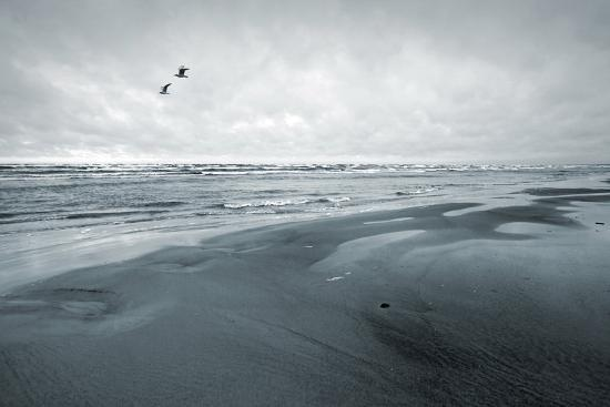 Stylized Monochrome Photo: Two Seagulls and Empty Coast of the Sea. Gulf of Finland, Baltic Sea, Na-Eugene Sergeev-Photographic Print