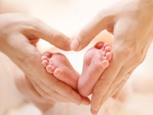 Baby Feet in Mother Hands. Tiny Newborn Baby's Feet on Female Heart Shaped Hands Closeup. Mom and H by Subbotina Anna