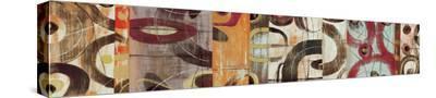 Subdivision-Joe Esquibel-Stretched Canvas Print