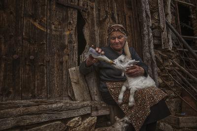 Substitute Mother-Desislava Ignatova-Photographic Print