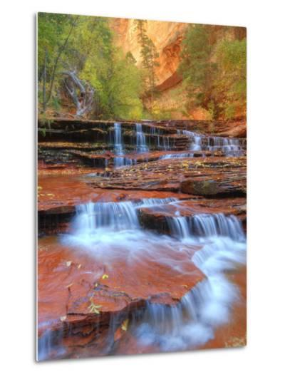 Subway Cascades and Approach at Zion-Vincent James-Metal Print