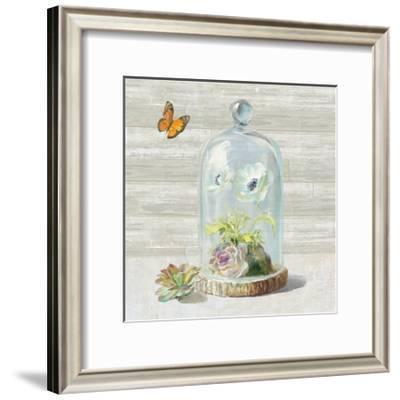 Succulent Garden I-Danhui Nai-Framed Art Print
