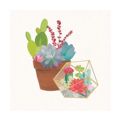https://imgc.artprintimages.com/img/print/succulent-garden-ii_u-l-q10f7j30.jpg?p=0
