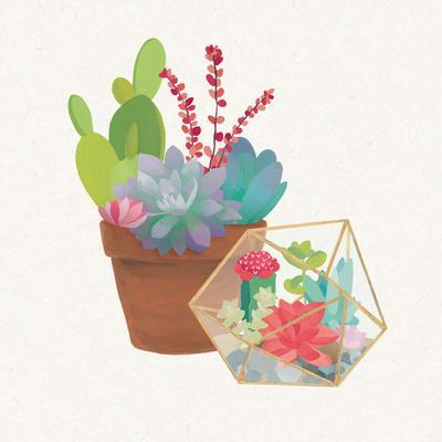 https://imgc.artprintimages.com/img/print/succulent-garden-ii_u-l-q10f7j40.jpg?p=0