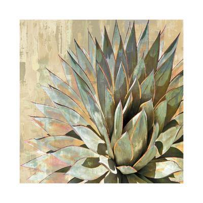 https://imgc.artprintimages.com/img/print/succulent-i_u-l-f8vgj30.jpg?p=0
