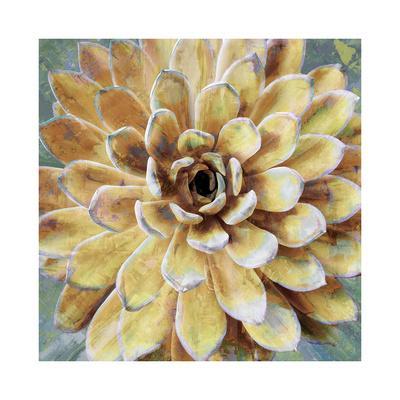 https://imgc.artprintimages.com/img/print/succulent-ii_u-l-f8veoc0.jpg?p=0