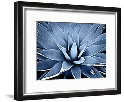 Succulent Indigo III-Mia Jensen-Framed Giclee Print