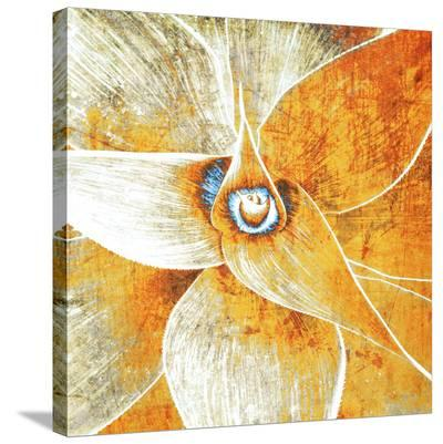 Succulent Plant--Stretched Canvas Print