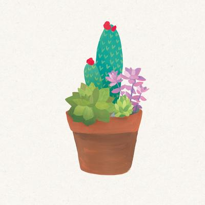 Succulent Pot II-Wild Apple Portfolio-Art Print