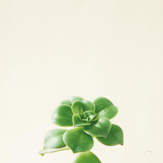 Succulent Simplicity VII Neutral-Felicity Bradley-Art Print