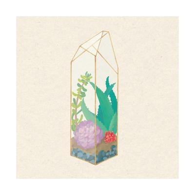 https://imgc.artprintimages.com/img/print/succulent-terrarium-i_u-l-q1axd6d0.jpg?p=0