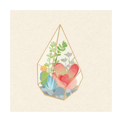 https://imgc.artprintimages.com/img/print/succulent-terrarium-vii_u-l-q1axfp20.jpg?p=0