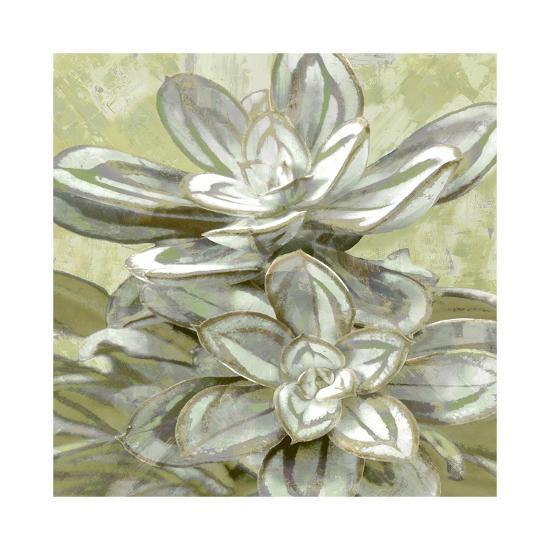 Succulent Verde IV-Lindsay Benson-Giclee Print