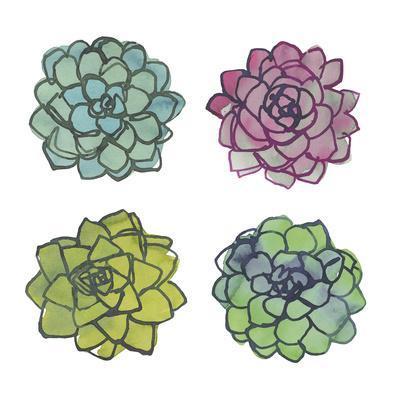 https://imgc.artprintimages.com/img/print/succulents_u-l-f8nhqd0.jpg?p=0