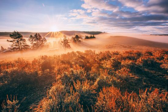 Sudden Fog and Light Beams, Morning at Yellowstone National Park-Vincent James-Photographic Print