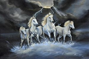 Thundering Horses by Sue Clyne