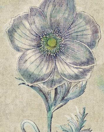 Belle Fleur II Crop Linen by Sue Schlabach