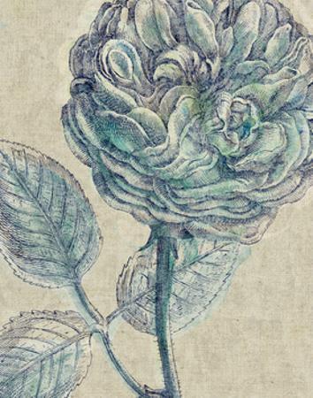 Belle Fleur III Crop Linen by Sue Schlabach