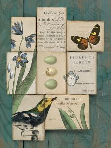 Birds and Butterflies I by Sue Schlabach