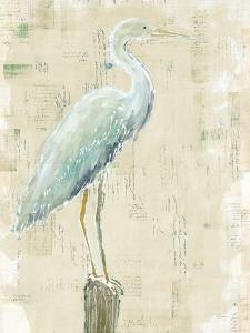 Coastal Egret I v2 no Aqua by Sue Schlabach
