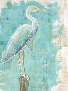 Coastal Egret I by Sue Schlabach