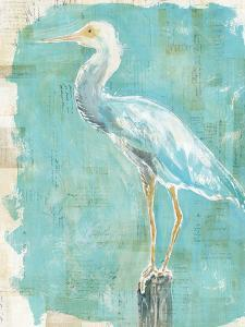 Coastal Egret II by Sue Schlabach