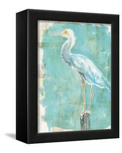 Coastal Egret II by Sue Schlabach