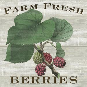Farm Fresh Berries by Sue Schlabach