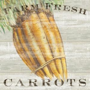 Farm Fresh Carrots by Sue Schlabach