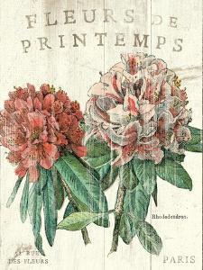 Fleur de Printemps by Sue Schlabach
