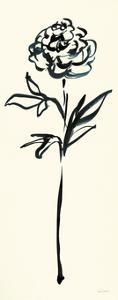 Floral Line II on Cream by Sue Schlabach