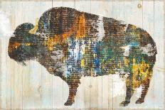 Natures Fern I-Sue Schlabach-Art Print