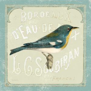 Parisian Bird I by Sue Schlabach