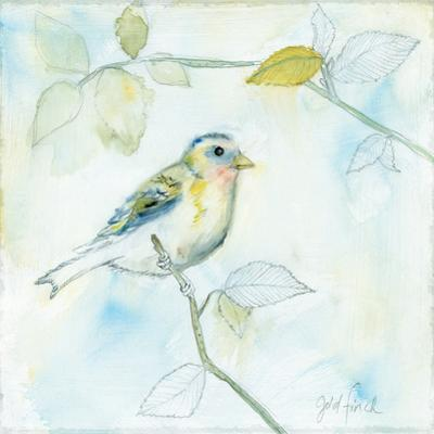 Sketched Songbird I by Sue Schlabach