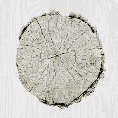 Woodland Years II by Sue Schlabach