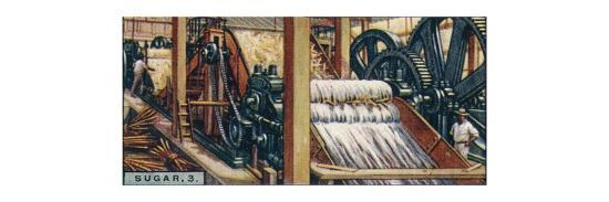 'Sugar, 3. Crushing the Canes, Java', 1928-Unknown-Giclee Print