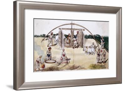 Sugar Cane Pressing, Kutch School, circa 1840-50--Framed Giclee Print