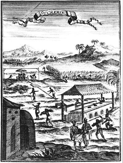 Sugar Factory and Plantation in the West Indies, 1686-Allain Manesson Mallet-Giclee Print