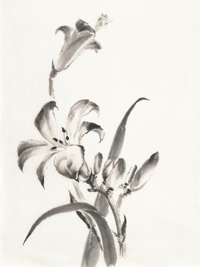 Sumi Daylily II-Chris Paschke-Art Print