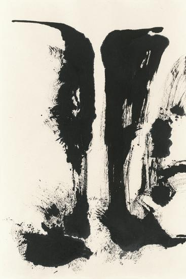 Sumi Waterfall View V-Chris Paschke-Art Print