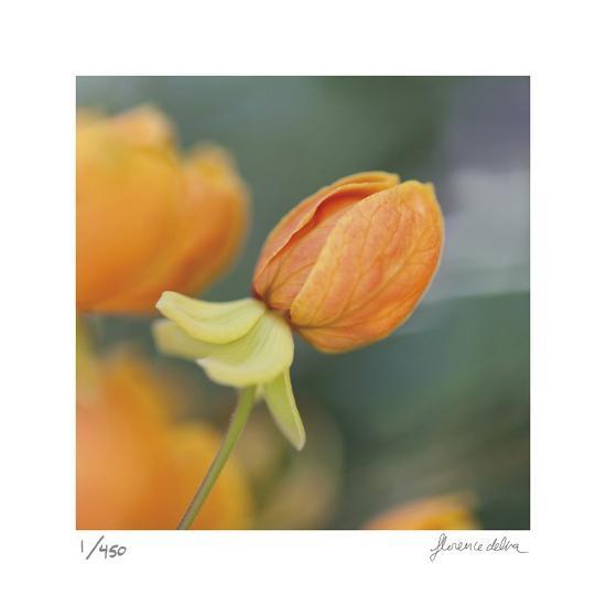 Summer Bloom 2-Florence Delva-Limited Edition