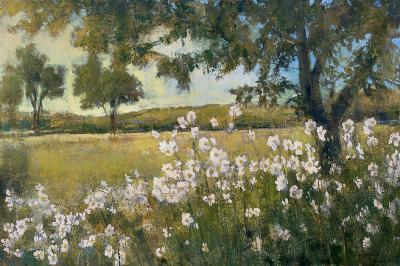 Summer Bloom-Patrick-Art Print