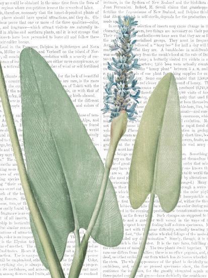 Summer Botanicals IV-Wild Apple Portfolio-Art Print
