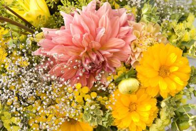 Summer Bouquet I-Maureen Love-Photographic Print