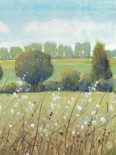Summer Breeze II-Tim OToole-Art Print